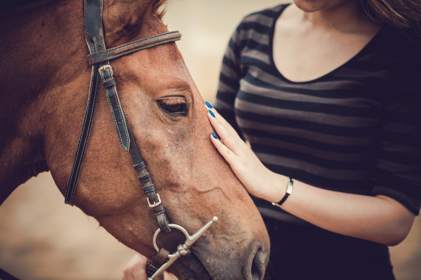 Equine-Assisted Psychotherapy